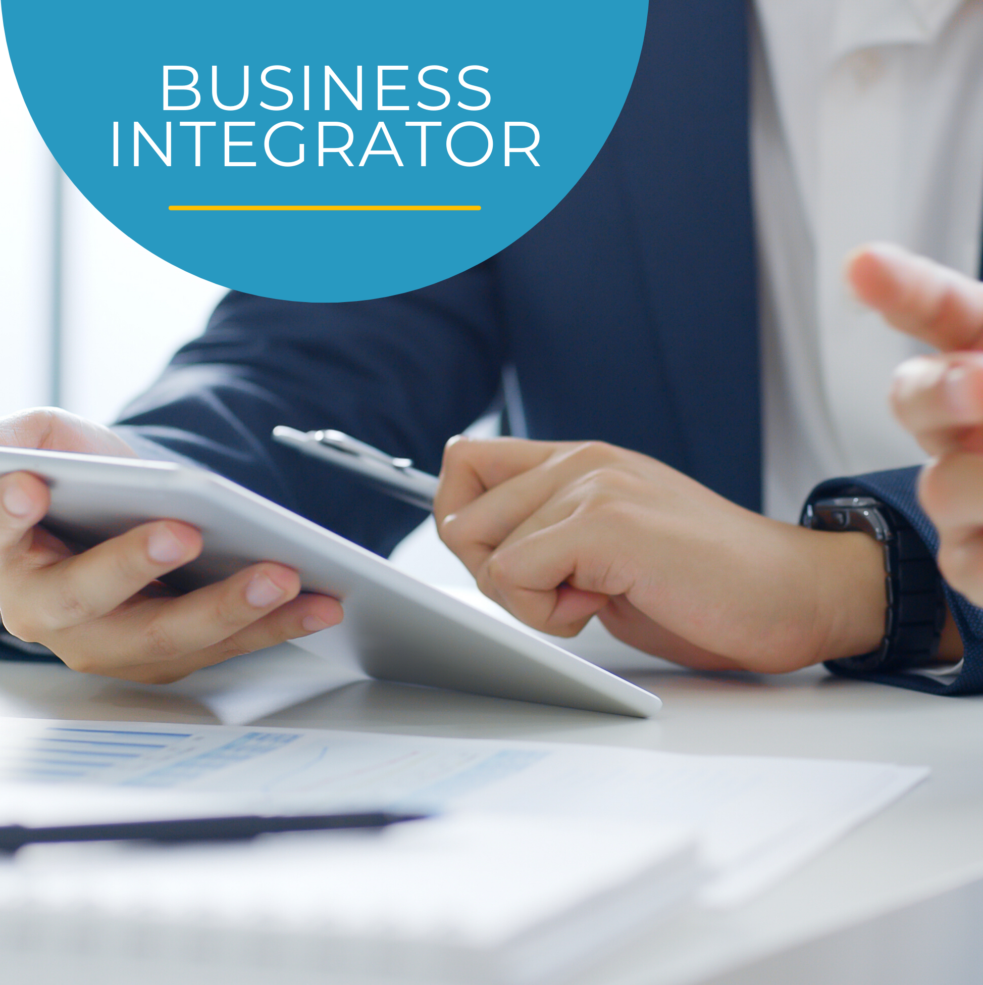 Business Integrator Services