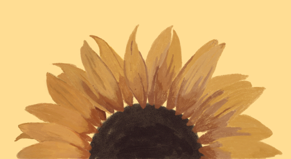 Half of a sunflower illustrated
