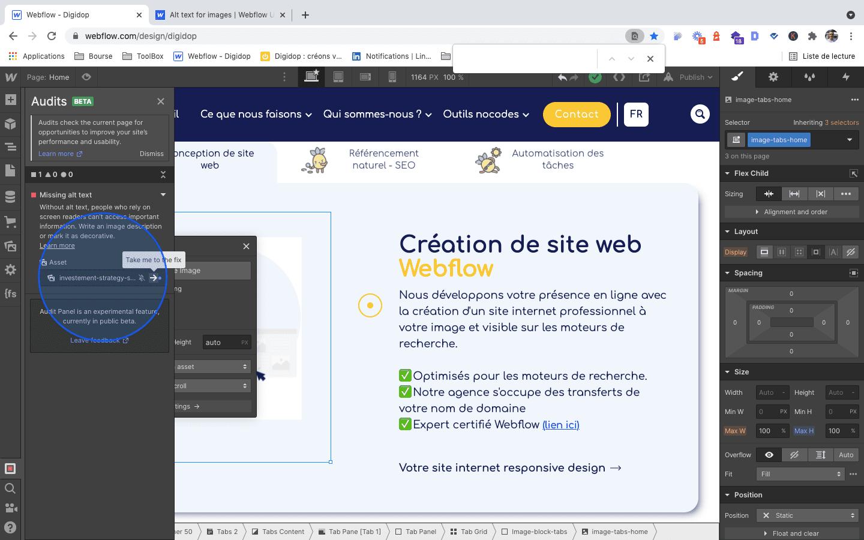 Identification Webflow files audit error