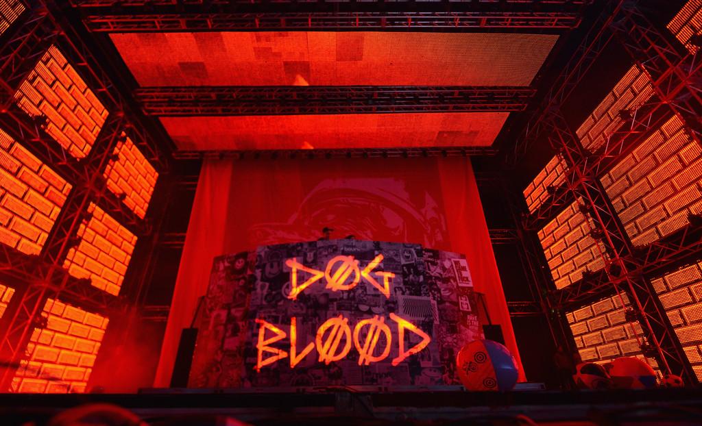 Dog Blood Festival