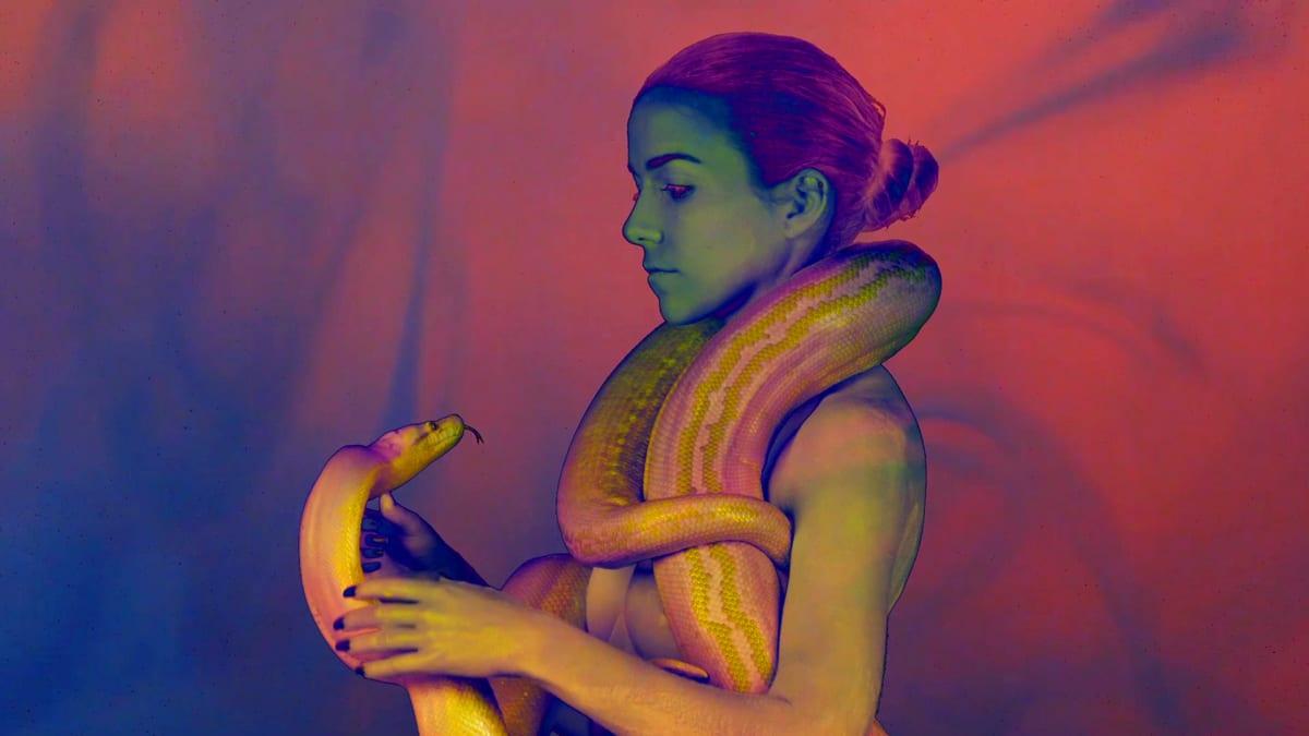 Kill the Noise Visuals vol.I snake
