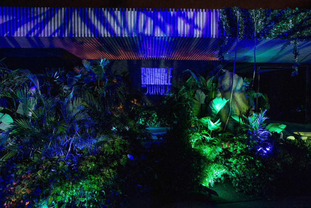 Notch's 'Crumble in the Jungle' Party