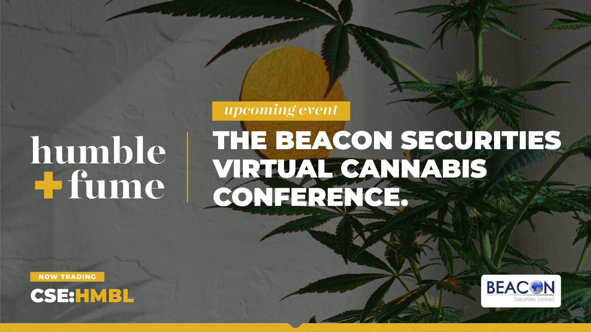 Humble & Fume to Participate in the Beacon Securities Virtual Cannabis Conference 2021 on September 9th