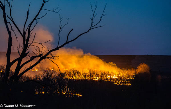 Field Burning Photo