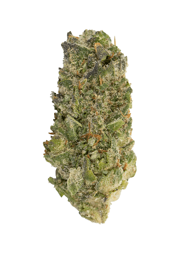 WAGNERS Silverback #4 Weed