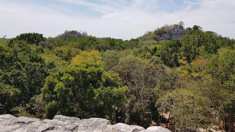 Vue hauteur de la pyramide dans la jungle à Calakmul, Mexique