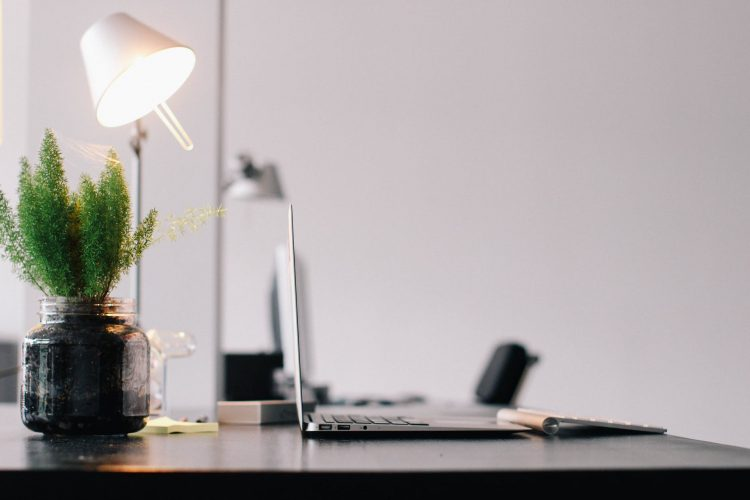 A laptop on an office desk with a plant | Sustainable office article