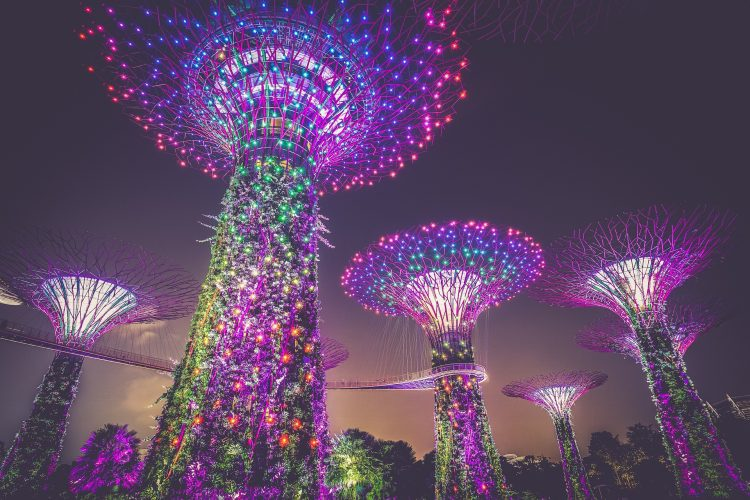 Image of artificial gardens in Singapore   Commercial real estate terminology in Singapore article