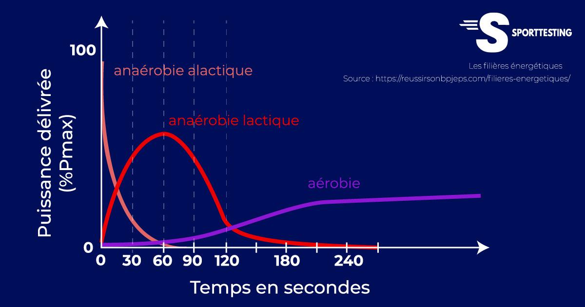 Schéma des filières énergétiques - anaérobie alactique - anaérobie lactique et aérobie en %Pmax par rapport au temps en secondes.