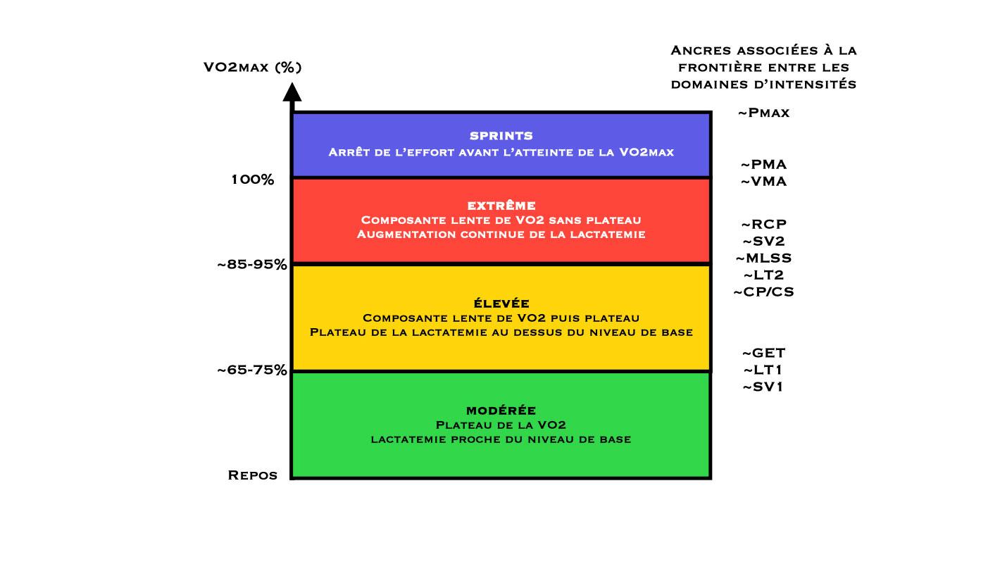 Les domaines d'intensités et la réponse physiologique.