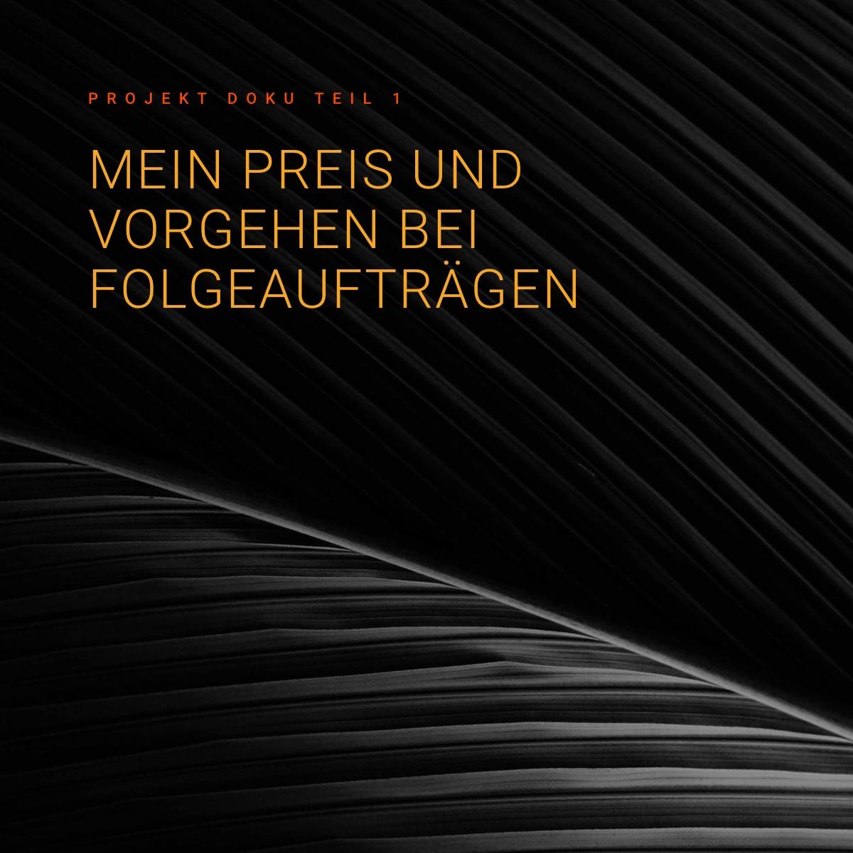 Neuer Online Shop Auftrag (Mai 2020) – Mein Preis und Ablauf bei Folgeaufträgen - Doku 1