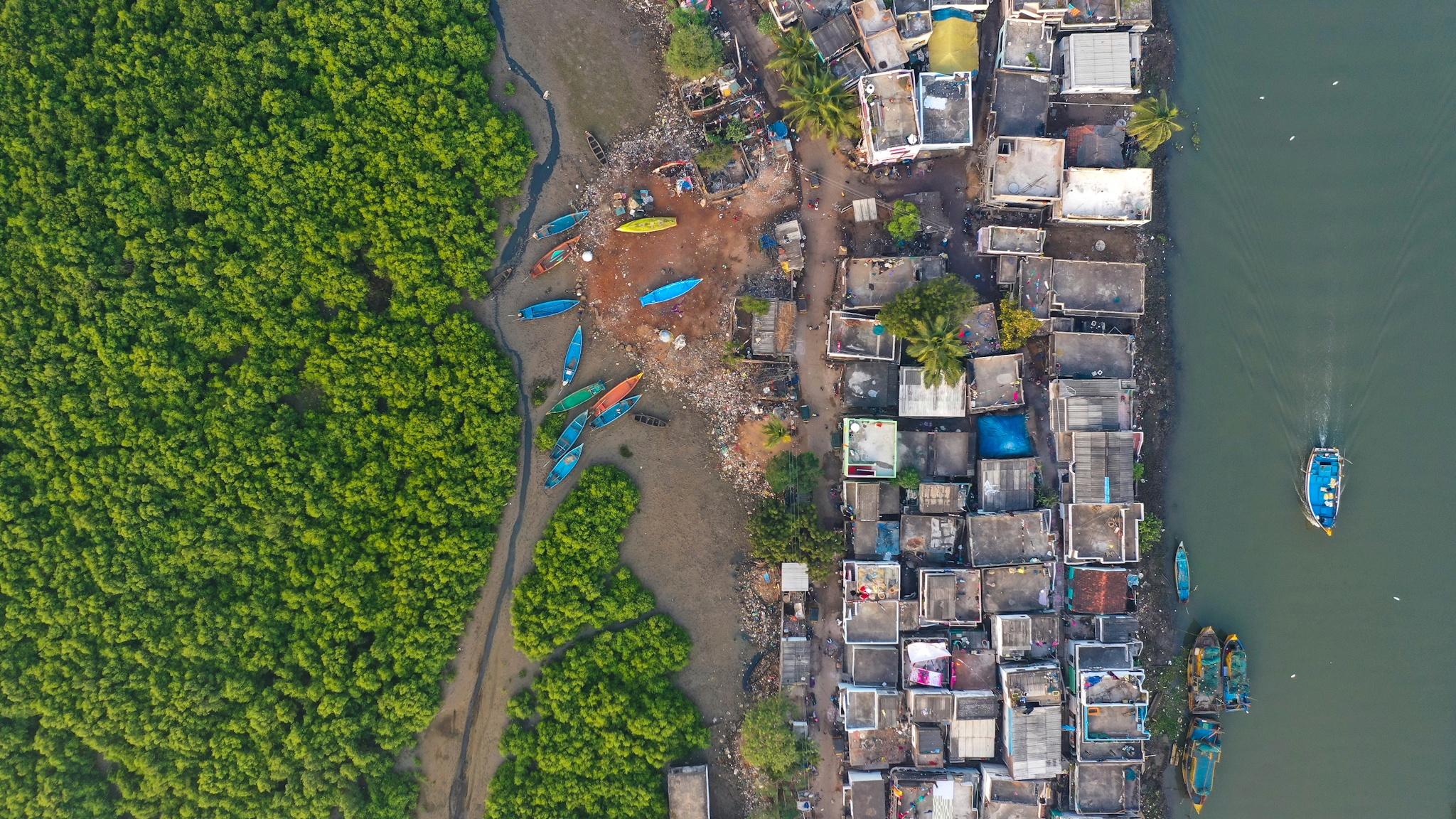 Concrete Jungle - Srikanth Mannepuri, India