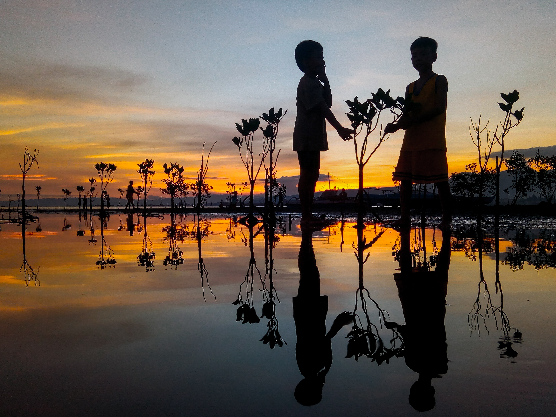 Mangrove Propagators – Mark Kevin Badayos, Philippines
