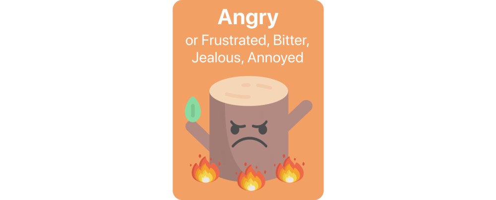 AngryCardWithBorder.png