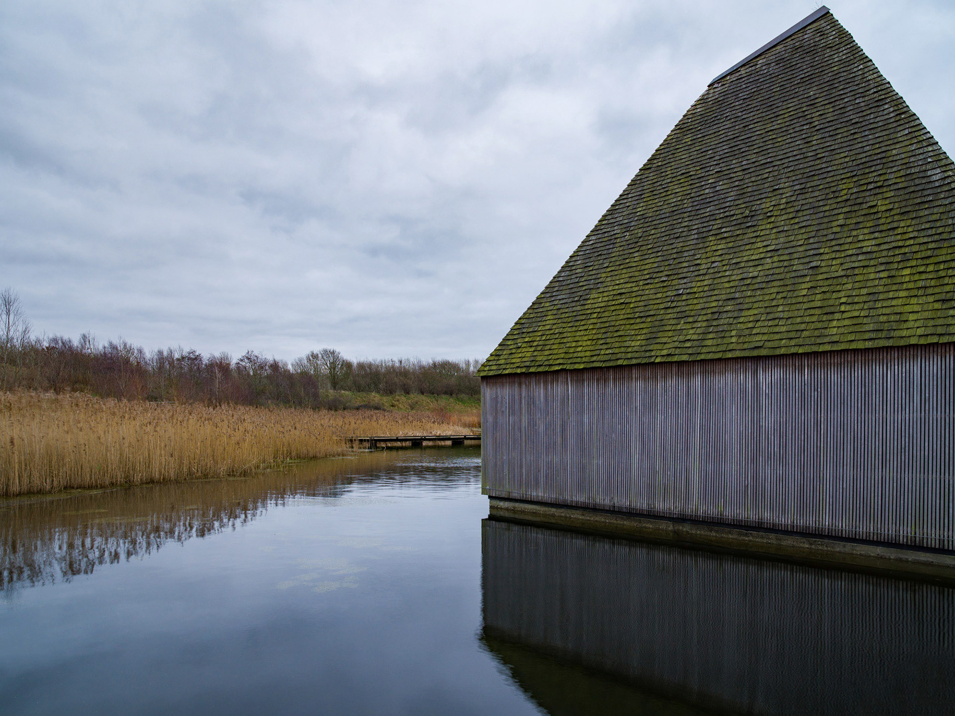 Architectural Photography Brockholes half nature and reeds and building showing it's curves and structure mixing into the atmosphere