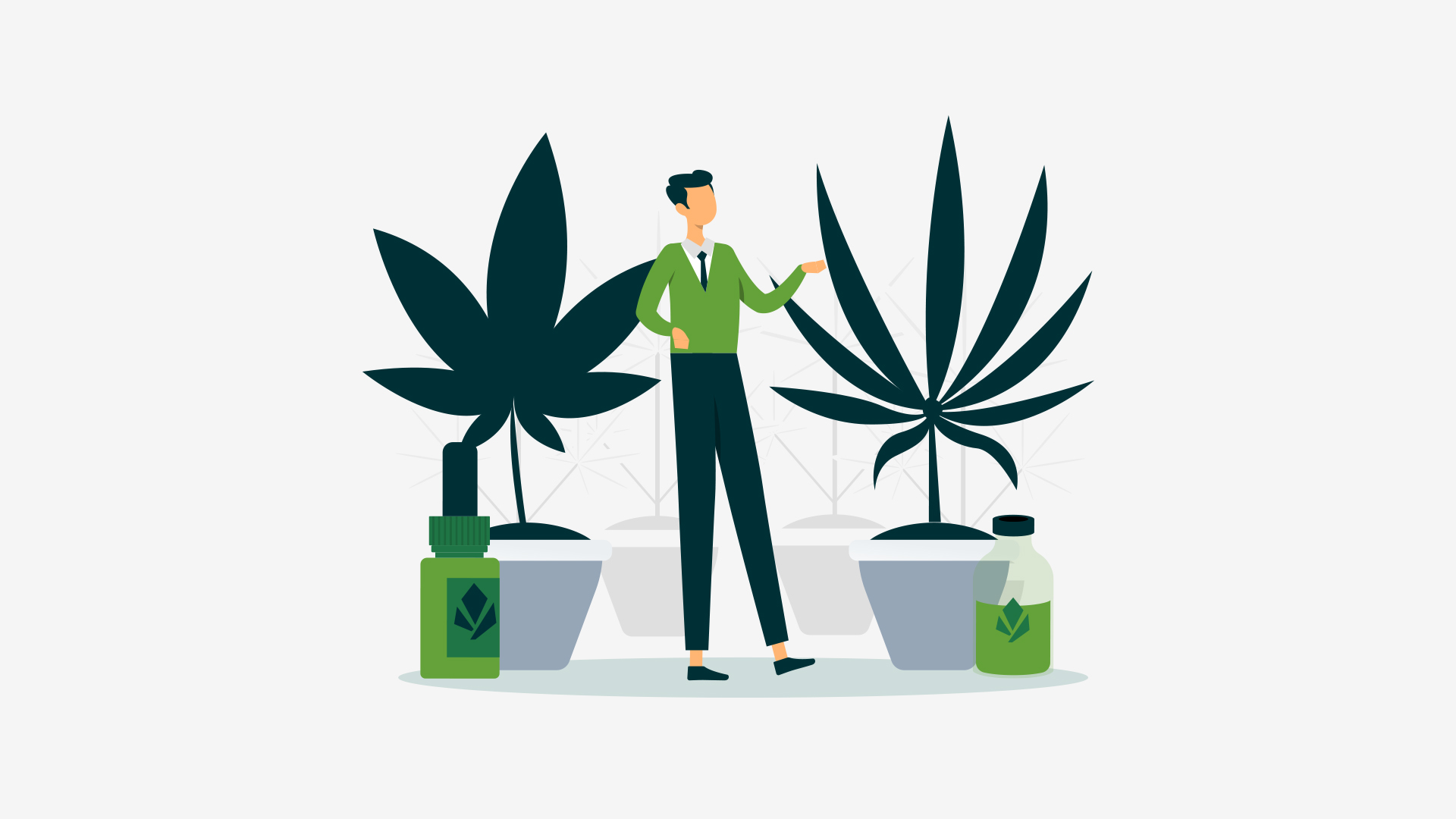 Most people don't realize there is a difference between Indica vs. Sativa CBD. While both of these species come from the cannabis plant, they are very different in terms of their features and beneficial effects.