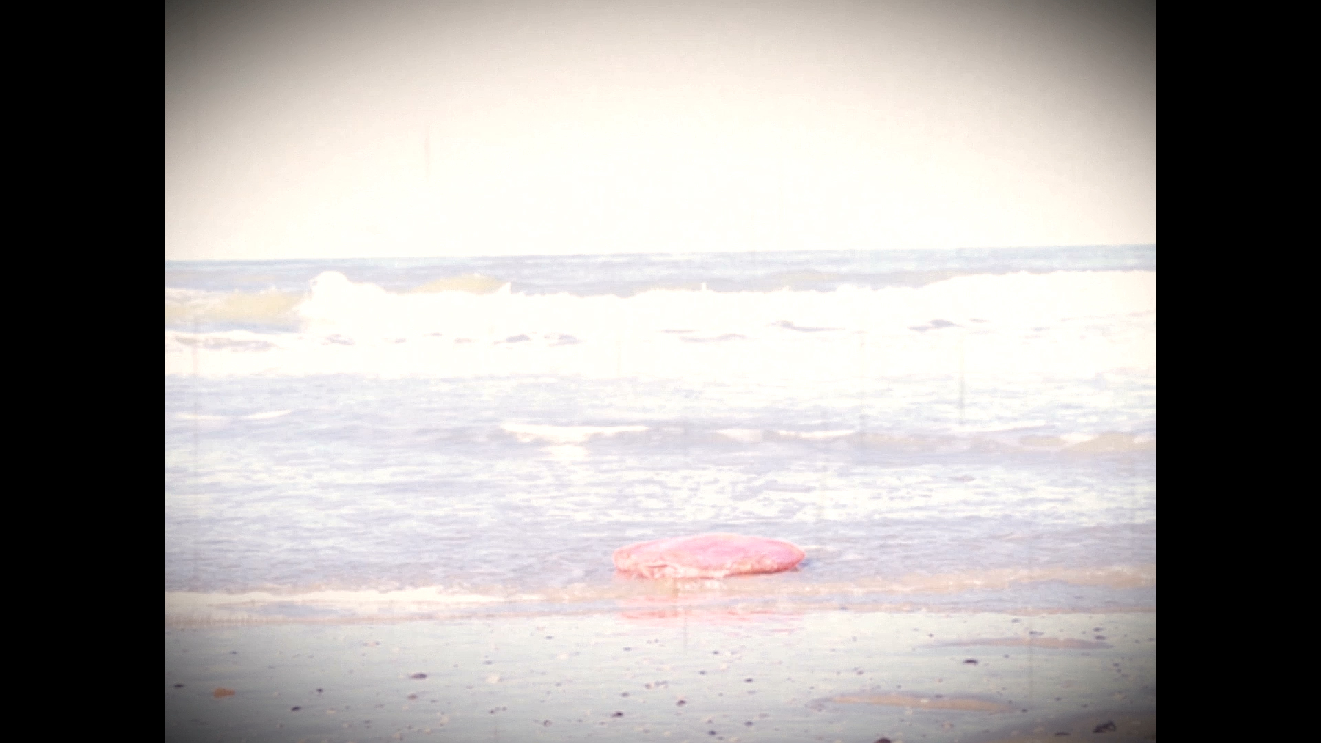 Video snapshot of a heart drifting on the shore
