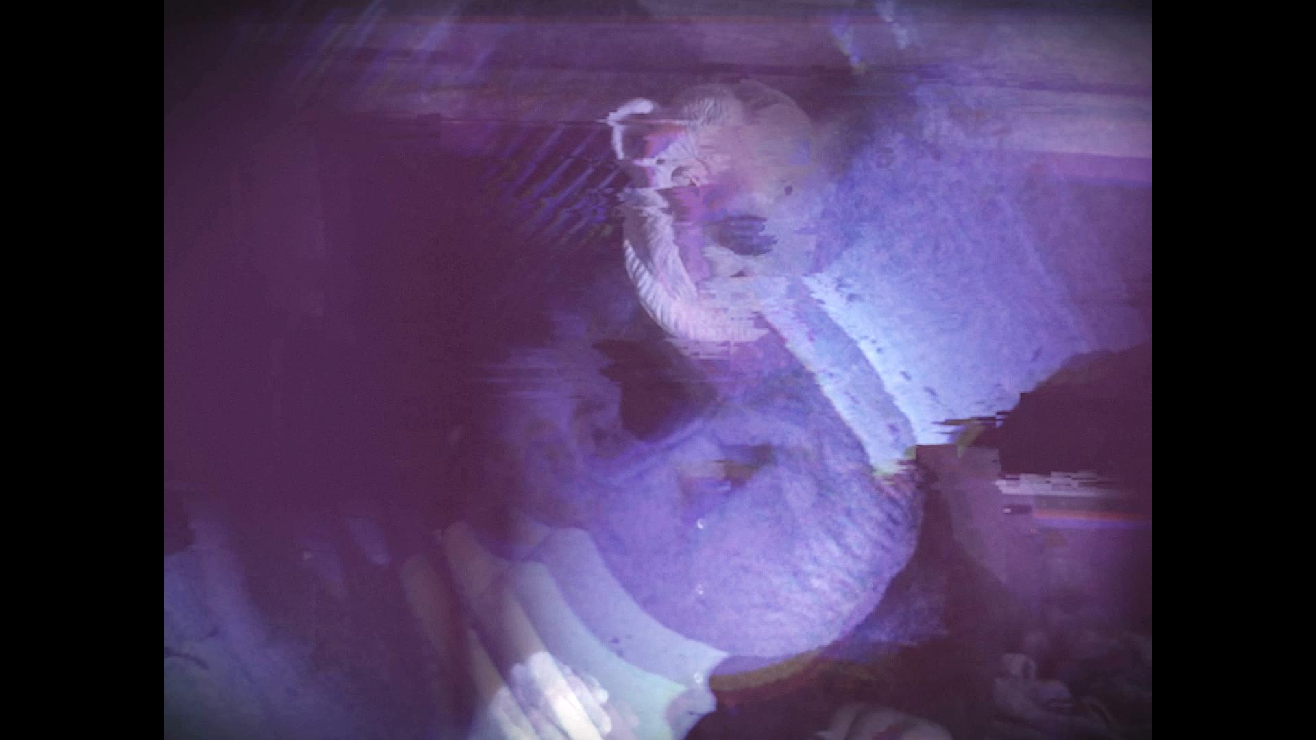Video Snapshot psychedelic polar bear