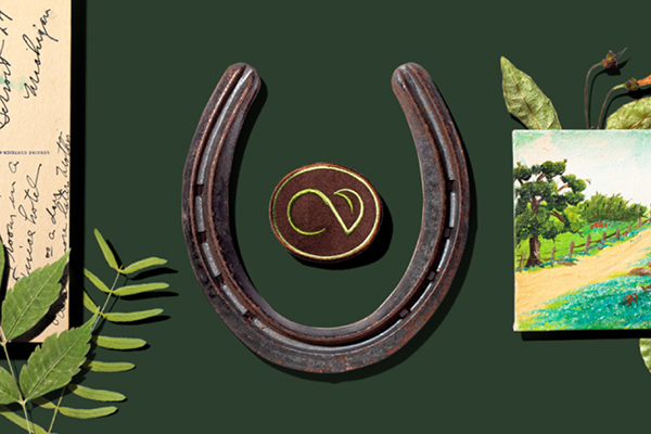 A collage of items including a horseshoe and a patch against a green background.