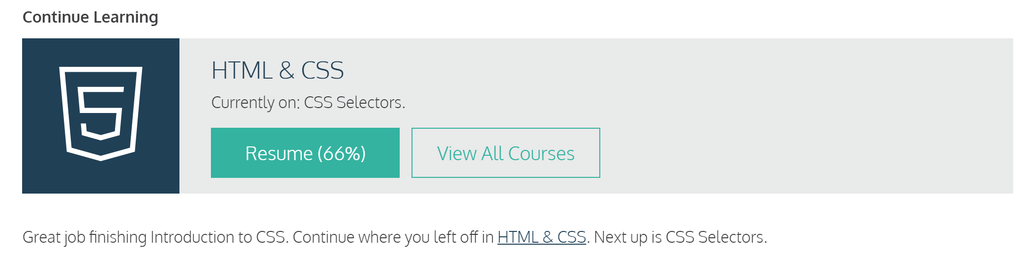 codecademy learning