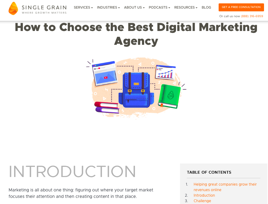 Single Grain - How to Choose the Best Digital Marketing Agency