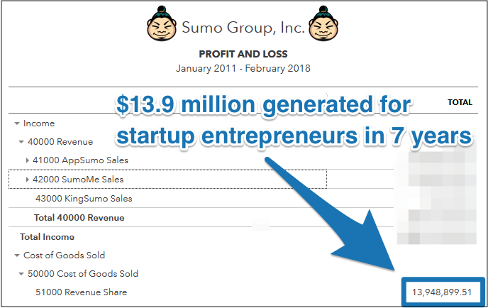 appsumo profit and loss