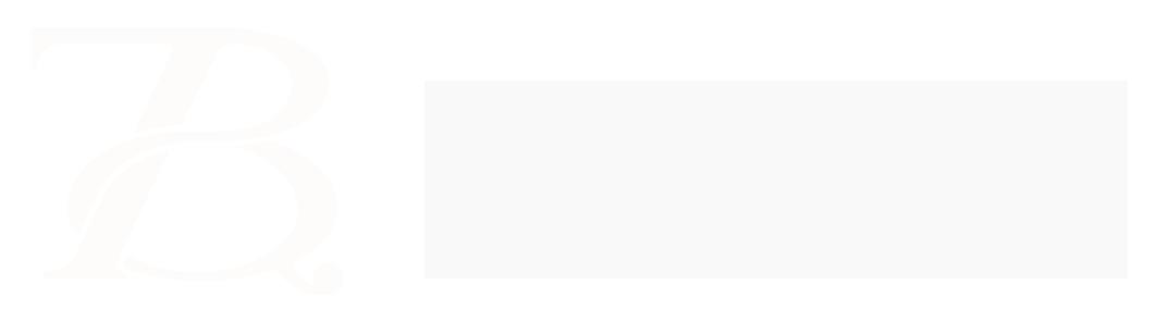 BTQ Ventures logo