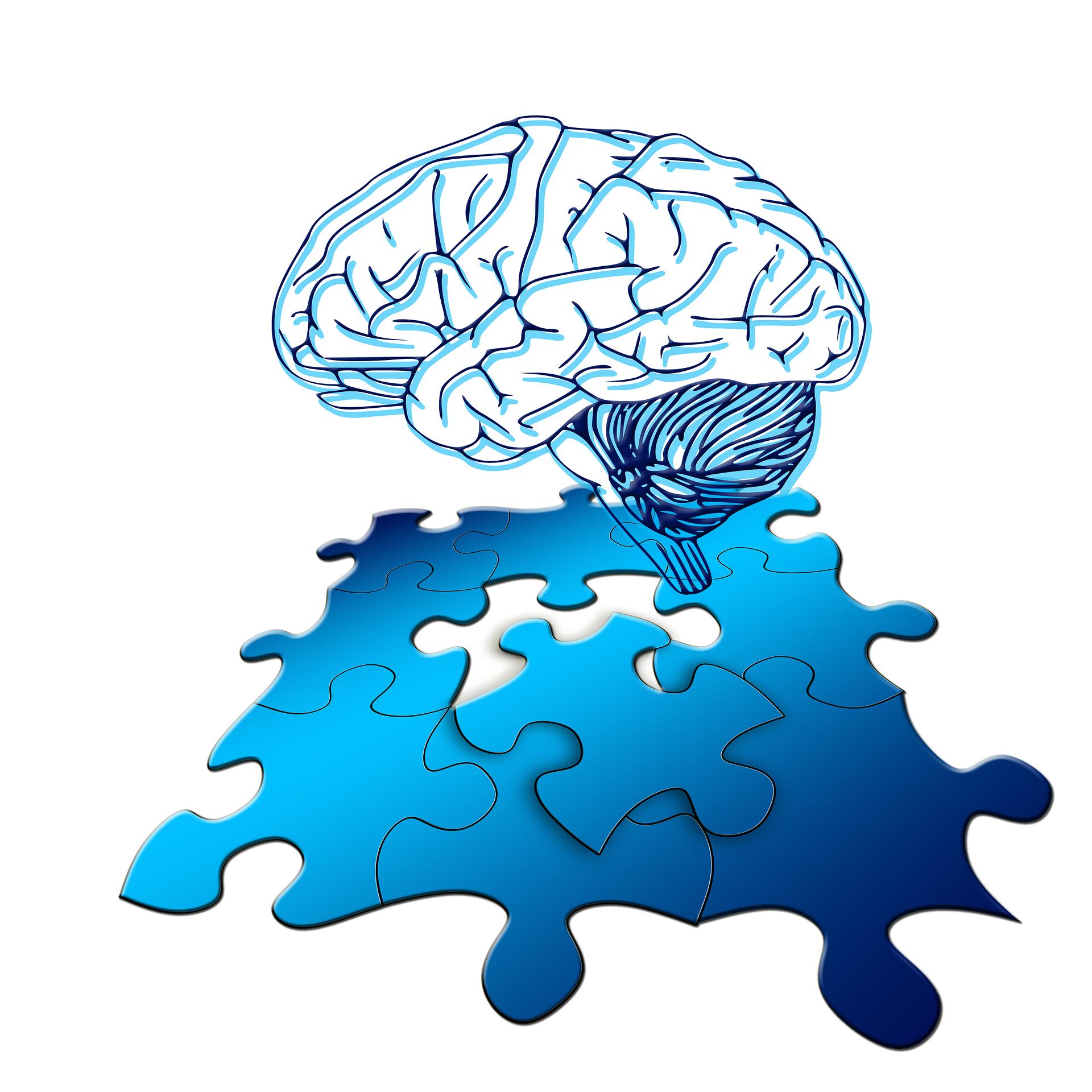 brain and jigsaw graphic