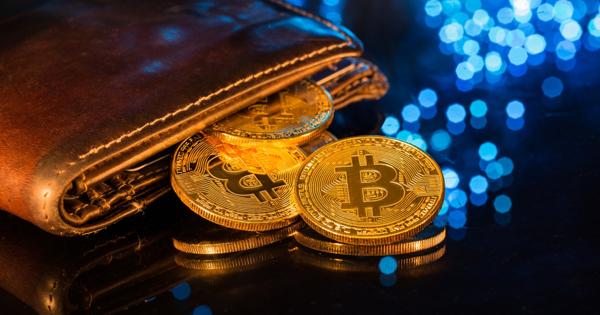 Bitcoin Whales Purchased 122,588 Bitcoins (BTCs) as Market Crashed
