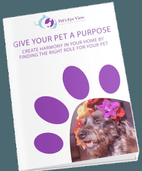 Give your Pet a Purpose E-Book