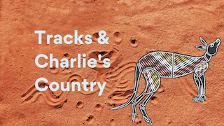 Comparing Tracks and Charlie's Country