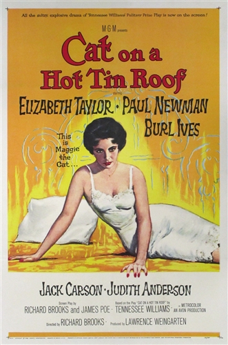 Crafting a Literary Perspectives Essay: Cat on a Hot Tin Roof
