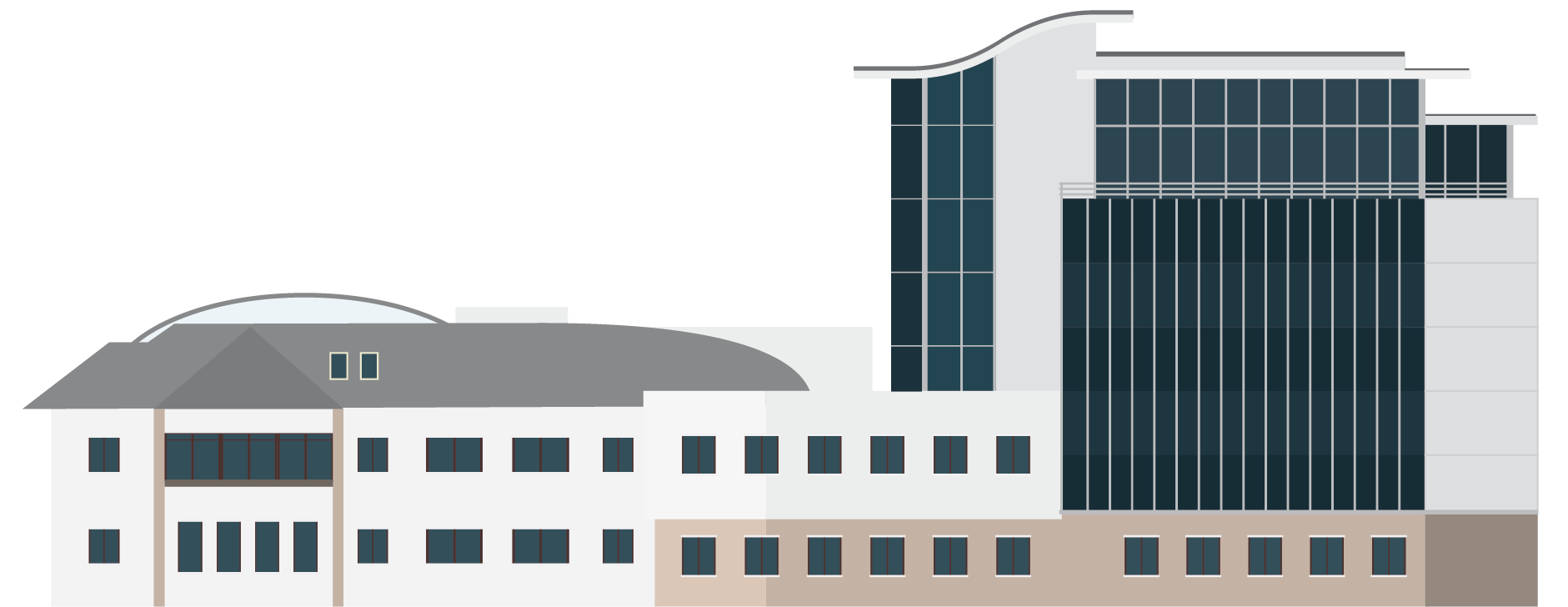 Scymaris lab illustration