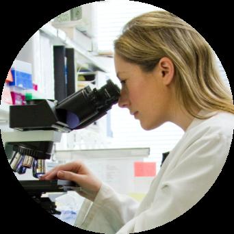 North America Nicotine Research and Development