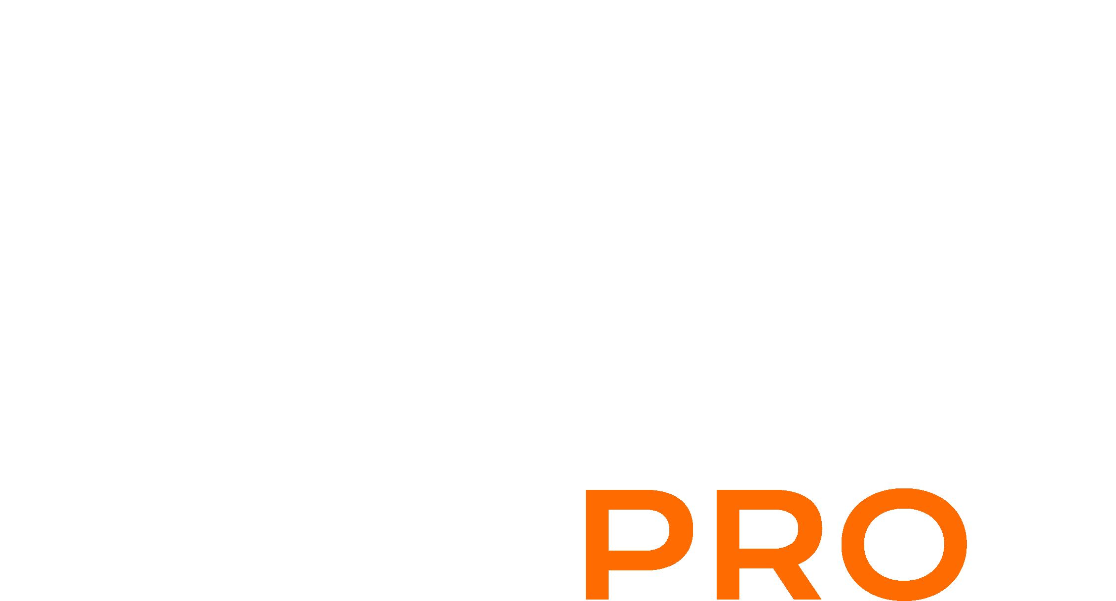 Ami Pro logo