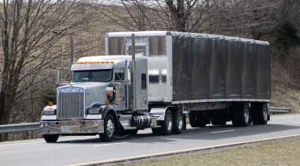 Big rig in road