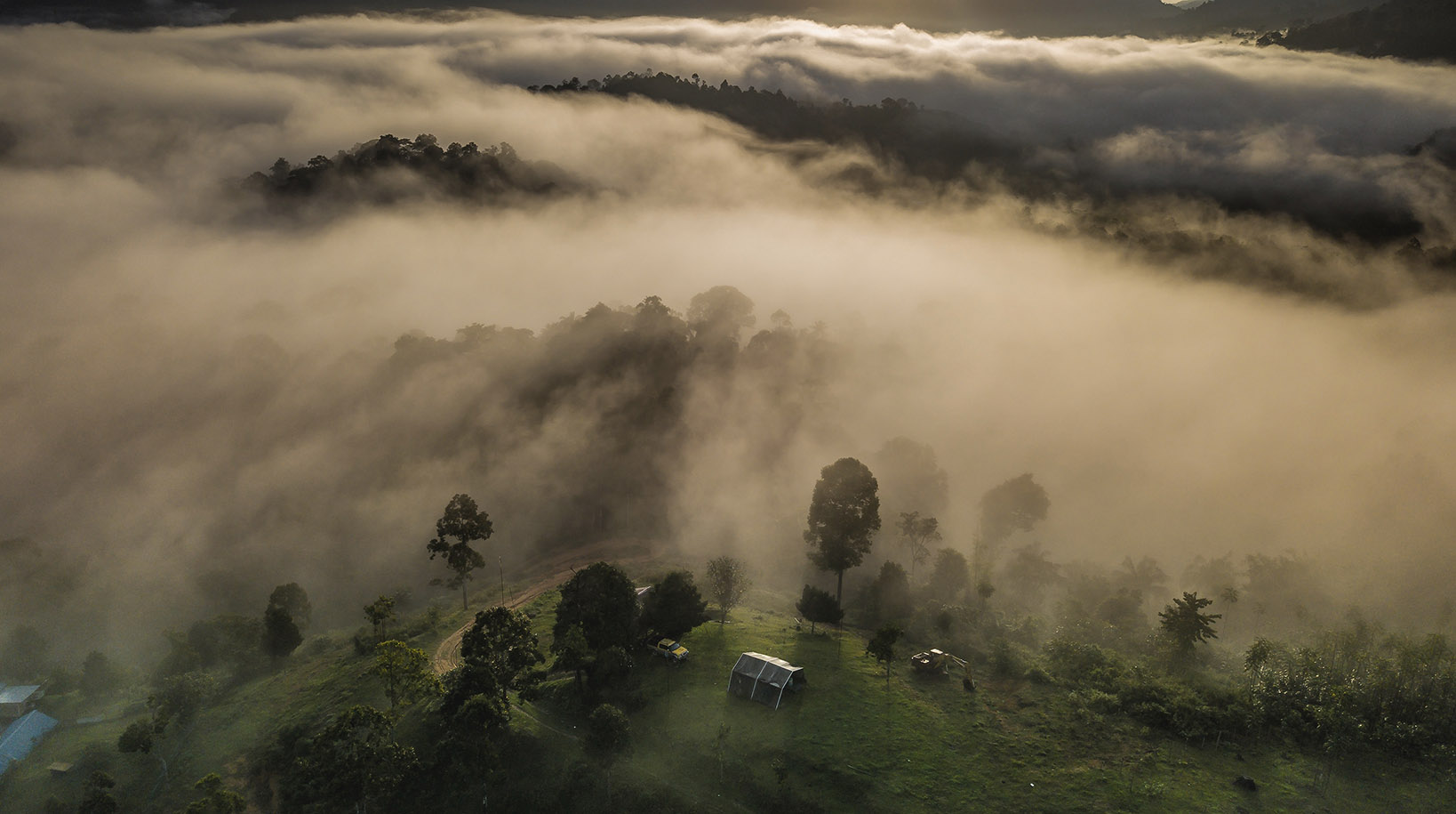 Why We've Protected 48 Football Pitches Of Rainforest