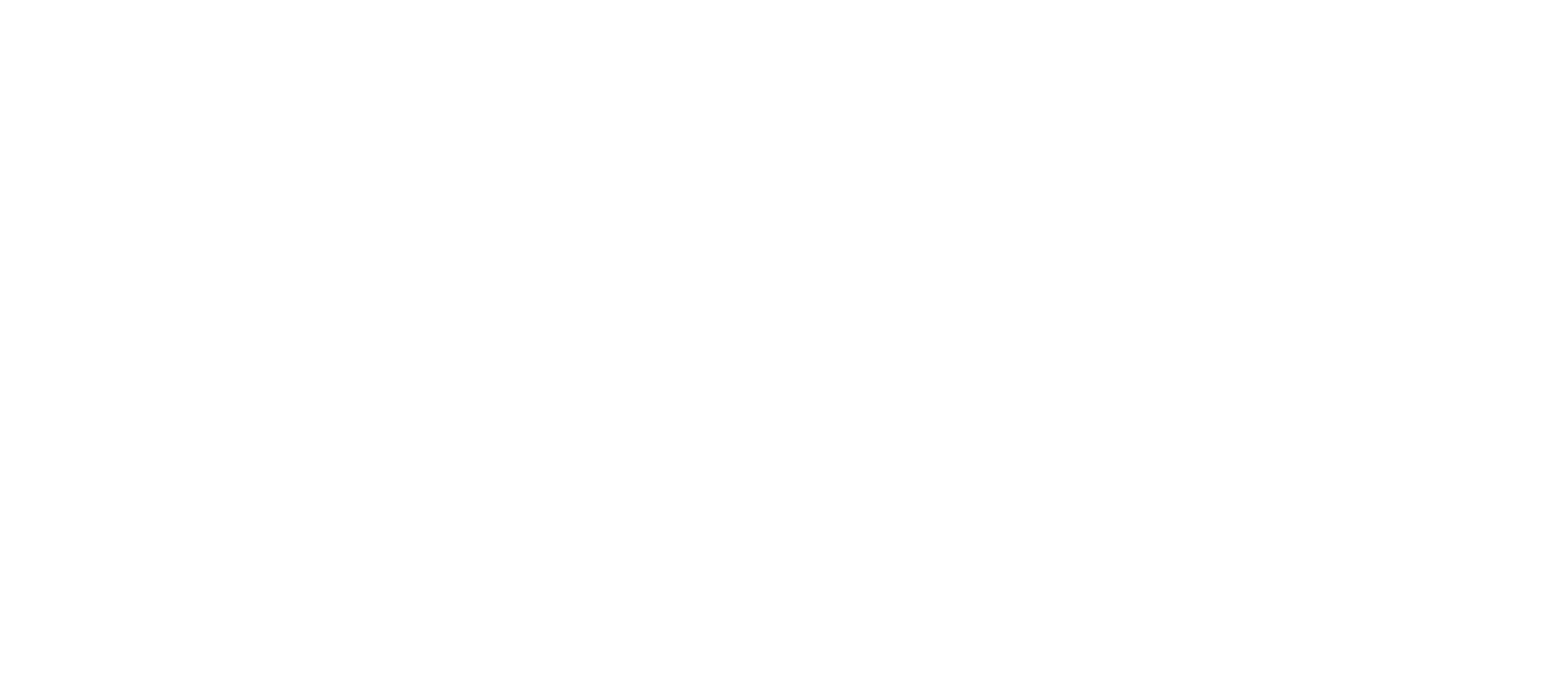 Escape Velocity Strategy Logo
