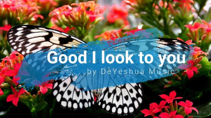 God i look to you  with lyrics