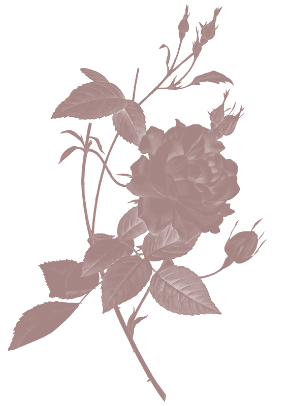 A stylized floral image
