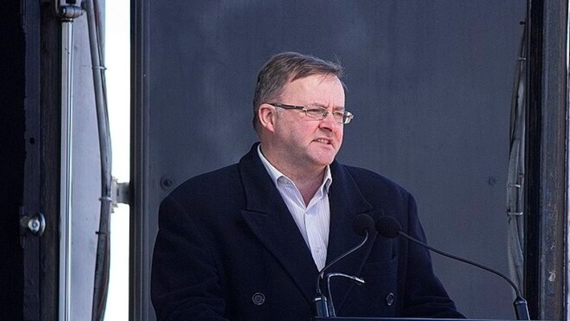 Anthony Albanese: the leader in the shadows
