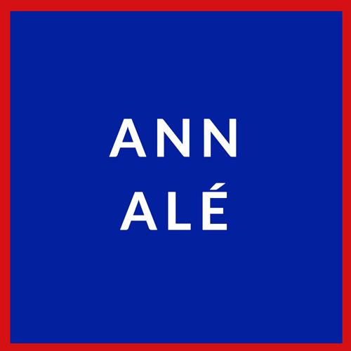 Haitian flag reading Ann ale