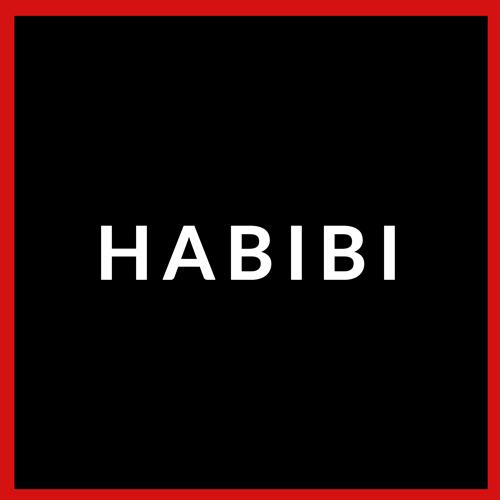 Egyptian flag reading Habibi