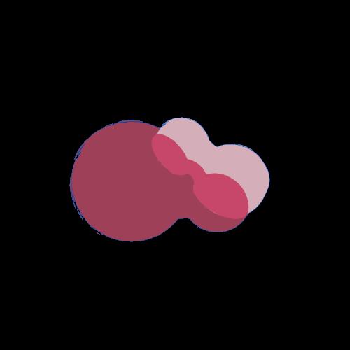 Startup Checkr Logo