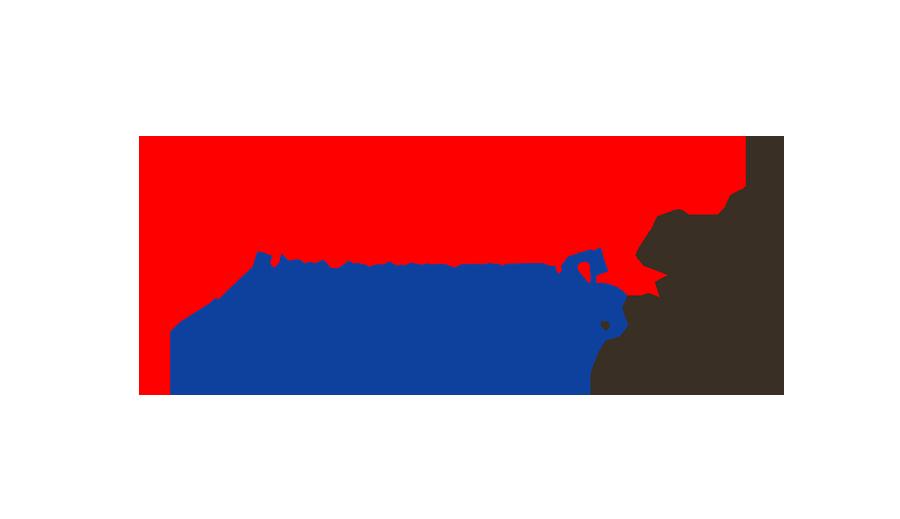 Chibi Dinos Team: Jurassic Jumpers