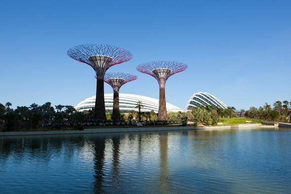 Cooled Conservatories Gardens By The Bay 04 Craig Sheppard 590Px