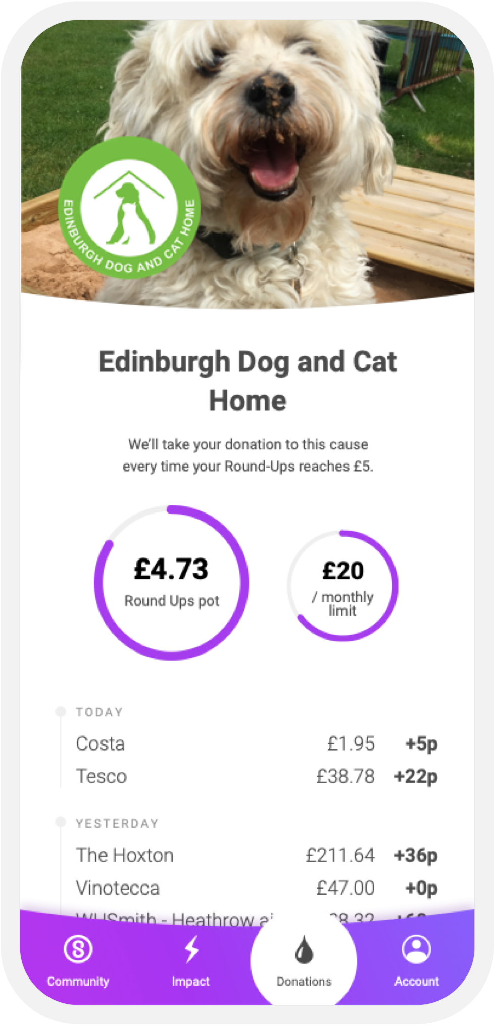 Support Edinburgh Dog and Cat Home on Sustainably