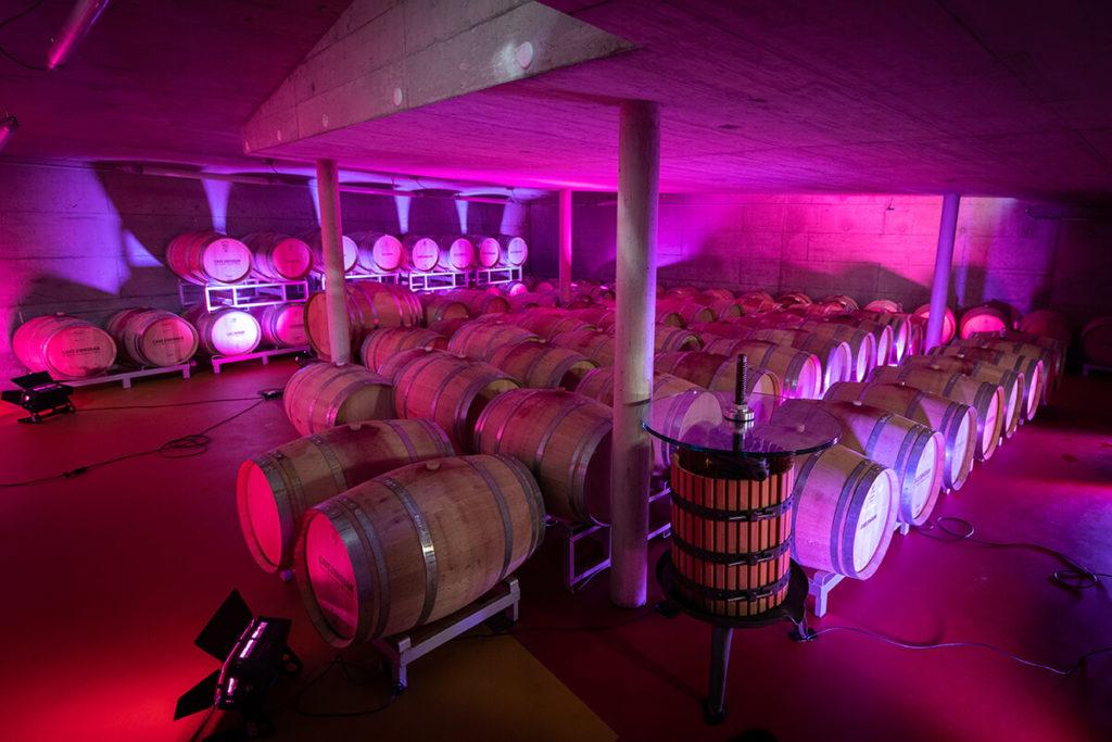Live Weindegustation Cave du Rhodan Schweiz