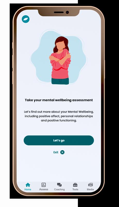 raiys wellbeing assessment screenshot