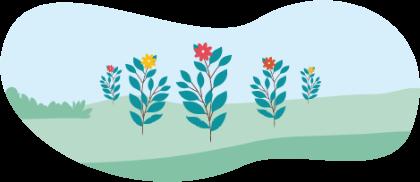 flourish package